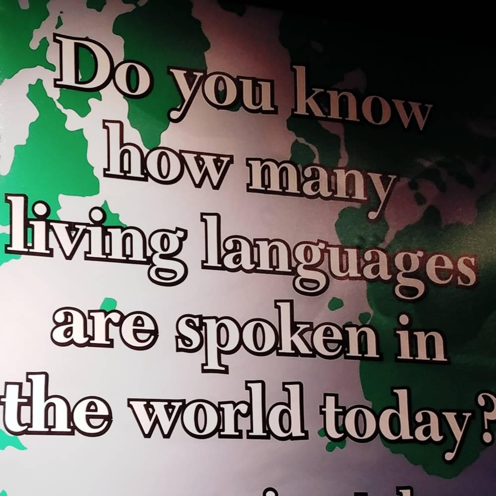 virmuze exhibit Language logo main