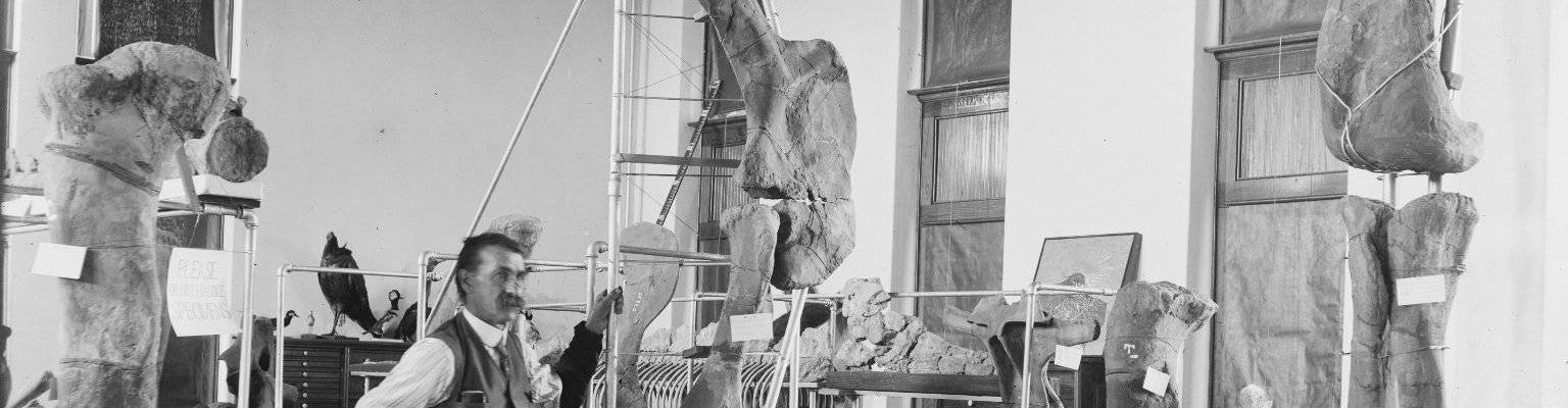 virmuze exhibit S.H. Knight's Fossils of Wyoming logo main banner