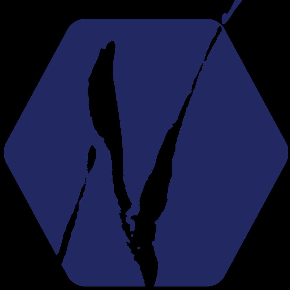 virmuze museum The Neville Public Museum main logo